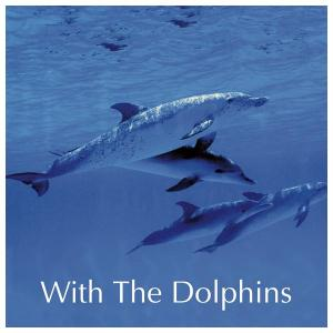 CD The Way of the Dolphin